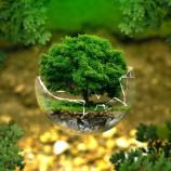 Grenelle de l'environnement RT2012