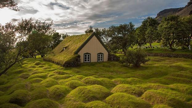 Les toitures végétales scandinaves